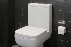 oilet repair Brisbane